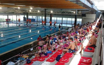 Aquí podeu veure la segona jornada de natació territorial dels jocs esportius escolars (Tortosa, 29 de maig 2021)